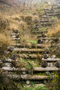Old rustic wooden steps up a grassy hillside Royalty Free Stock Photo