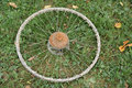 Old rusty bicycle wheel in grass Royalty Free Stock Photos