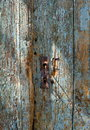 Old rusty keyhole in a weathered old wooden blue door Royalty Free Stock Photo