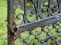 The old rusty lock on gate through a chain weighs of an fencing from iron Stock Image
