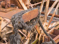 Old rusty riverboat paddle wheel Royalty Free Stock Photo