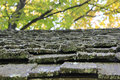 Old Shake Roofing Shingles Royalty Free Stock Photo