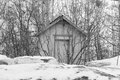 Old shed a that is surrounded by trees Stock Image
