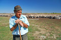Old shepherd with grazing sheep leaning on his stick Royalty Free Stock Photography