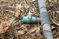 Old Spinger And Pvc Pipe In Fa...