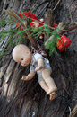 Old spooky dolls hanging in a tree in mexico city isla de las munecas island of the Royalty Free Stock Images