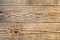 Old spruce board background from toned Royalty Free Stock Image