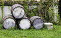 Old stacked beer barrels Stock Photos