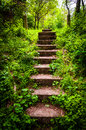Old stairs and surrounding vegetation at Codorus State Park Royalty Free Stock Photo