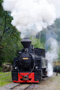 Old steam train from transilvania area called mocanita Royalty Free Stock Image