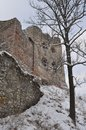 Old stone castle ruins with tree covered with snow Royalty Free Stock Photo