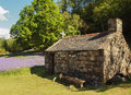 Old stone cottage outhouse in field brick with chimney a of bluebells the countryside with trees a wooden cross is on the slate Stock Photo