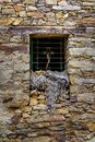 Old stone house window with nets used in ancient agriculture. La Hiruela Madrid