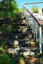 Old stone stair and surrounding vegetation Royalty Free Stock Photo