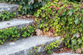 Old stone staircase Royalty Free Stock Photo