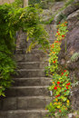 Old stone stairs in the garden Royalty Free Stock Photo