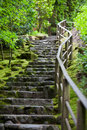 Rustic stone stairway, Portland Japanese Garden Royalty Free Stock Photo
