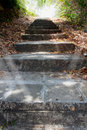 Old stone stairway to jungle Royalty Free Stock Photo