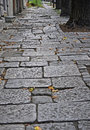 Old stone street Royalty Free Stock Images