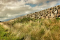 Old stone wall in fionnphort isle of mull scotland uk Royalty Free Stock Image