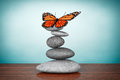 Old Style Photo. Balanced stones with butterfly Royalty Free Stock Photo