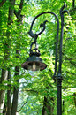 Old style street lamp on a background of green leaves Royalty Free Stock Photography