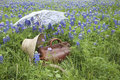 Old suitcase,bonnet and parasol in a field of bluebonnets Royalty Free Stock Photo