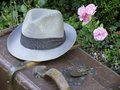 Old Suitcase, Hat and Roses Royalty Free Stock Images