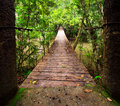Old suspension bridge across the river in forest Royalty Free Stock Photo