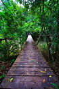 Old suspension bridge across the river in forest Stock Image