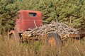 Old tandem junker truck loaded with branches an red junked parked in the long weeds is dead from trees Royalty Free Stock Photos
