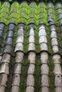 Old tiled roof detail of with green moss Royalty Free Stock Photography
