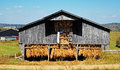 Old Tobacco Barn Royalty Free Stock Photo
