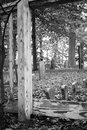 Old Tombstones in Cemetery Royalty Free Stock Photo
