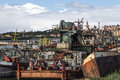 Old towboats barges and dredgers at the ship junkyard on sava ri photograph of belgrade urban panorama with decommissioned Stock Images