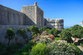Old town in dubrovnik and garden croatia Stock Photography