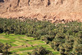 Old town in an oasis a beautiful the middle of the gorges of dades with toen made of mud Stock Images
