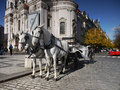 Old town prague landmark czech republic carriage with two white horses at the square in in the historical core of the city was Royalty Free Stock Images