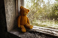Old toy bear abandoned in the ruins. Stock Photos