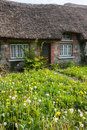 Old traditional irish cottage with overgrown lawn natural Royalty Free Stock Image