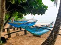 Old traditional wooden boats for fishing painted with blue on the ocean beach after tropical seasonal rain, Sri Lanka. Royalty Free Stock Photo