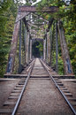Old train bridge an out in a redwood forest in california Stock Image