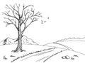 Old tree autumn graphic art black white landscape sketch illustration