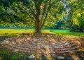 Old tree brick circle maze setting sun filters through big elm and shines on a spiral made of bricks Royalty Free Stock Photos