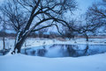 Old tree with frozen river in winter at sunset Royalty Free Stock Photo