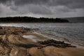 Old tree stump on lake´s sandy beach Royalty Free Stock Photo