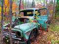 Old Truck In Autumn Forest