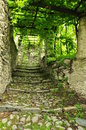 Old village stone paved passage under a vineyard lane and steps italian mountain Stock Image