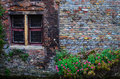 Old vintage brick wall with rusty window and flowers colorful Royalty Free Stock Photos
