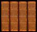 Old vintage leather book spines Royalty Free Stock Photo